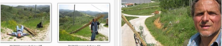 arte-social-art-soziale-kunst-aljezur-dirkmarkus-lichtenberger-25-28-04-2013-land-art-7000-carvalhos-eichen