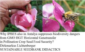 ipbes-antalya-gmo-hgt-pollination-food-security-bee-security-dirkmarkus-lichtenberger-sustainable-seedbank-didactics
