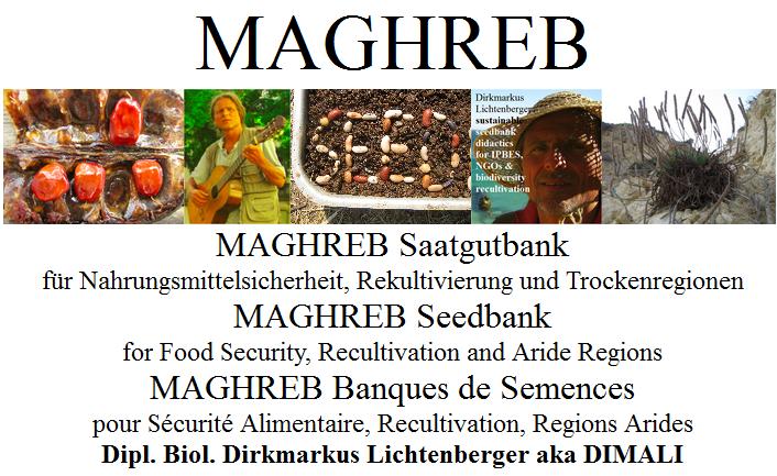 maghreb-banques-de-semences-pour-securite-alimentaire-recultivation-regions-arides-dipl-biol-dirkmarkus-lichtenberger-aka-dimali