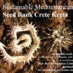sustainable-mediterranean-seed-bank-crete-kreta-scorpiurus-medicago-2016-04-13-dipl-biol-dirkmarkus-lichtenberger
